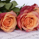 Śpiewam dla Ciebie... dla Ciebie...dla Ciebie...